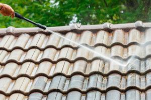 Pulizia tetto con rondella di idropulitrice a scoppio